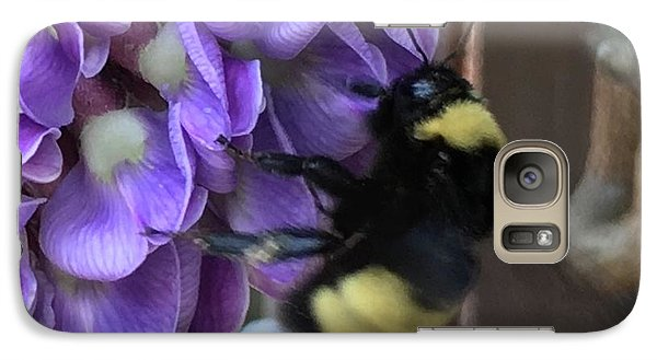 Galaxy Case featuring the painting Bee On Native Wisteria I by Angela Annas