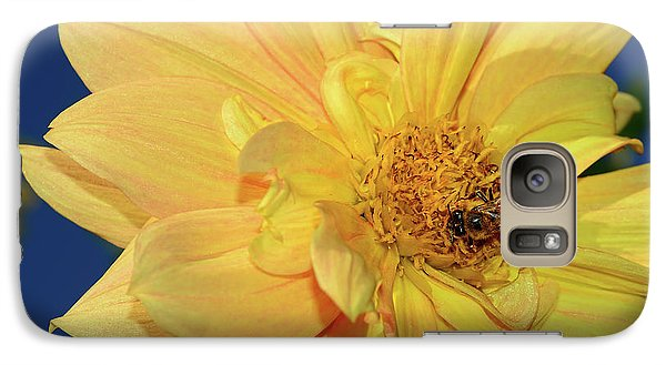 Bee On Pretty Dahlia By Kaye Menner Galaxy S7 Case by Kaye Menner