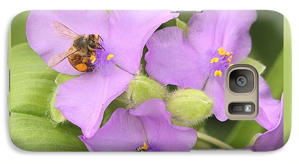 Galaxy Case featuring the photograph Bee On Purple Spiderwort by Sheila Brown