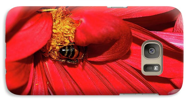 Bee On Red Dahlia By Kaye Menner Galaxy S7 Case by Kaye Menner