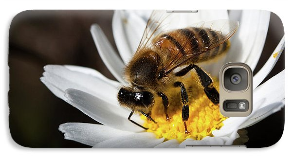 Galaxy Case featuring the photograph Bee On The Flower by Bruno Spagnolo