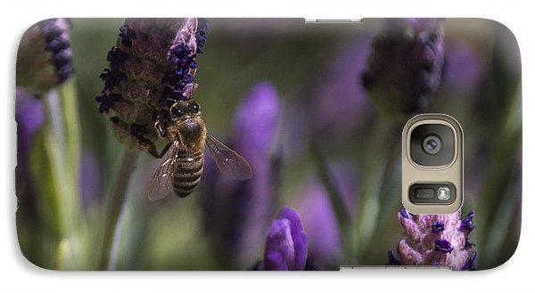Galaxy Case featuring the photograph Bee's Delight by Laura Pratt