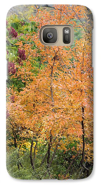 Galaxy Case featuring the photograph Before The Fall by Deborah  Crew-Johnson
