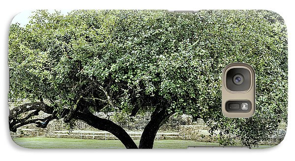 Belize Tree Galaxy S7 Case