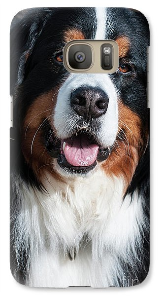 Galaxy Case featuring the photograph Bernese Mountain Dog Portrait  by Gary Whitton
