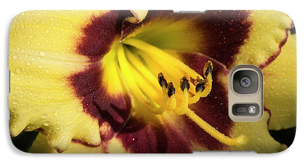 Galaxy Case featuring the photograph Bicolored Lily by Jean Noren