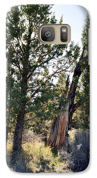 Galaxy Case featuring the photograph Big Bear Forest by Kyle Hanson