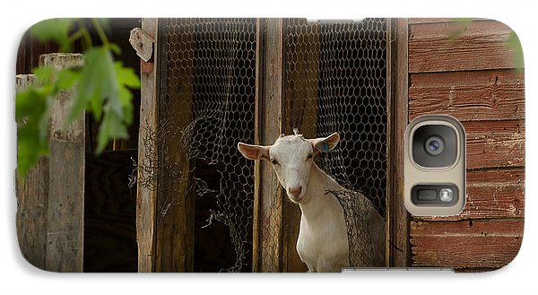 Galaxy Case featuring the photograph Billy Goat by Dan Traun