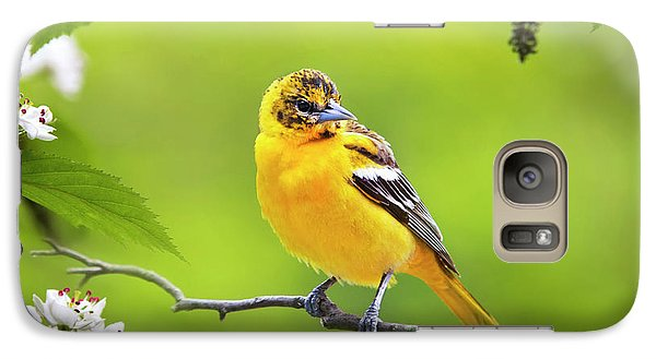 Bird And Blooms - Baltimore Oriole Galaxy S7 Case by Christina Rollo