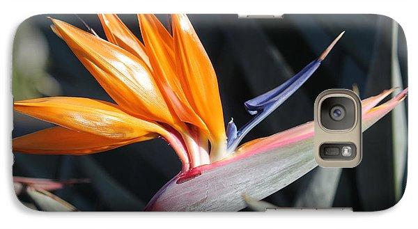 Galaxy Case featuring the photograph Bird Of Paradise by Wilko Van de Kamp