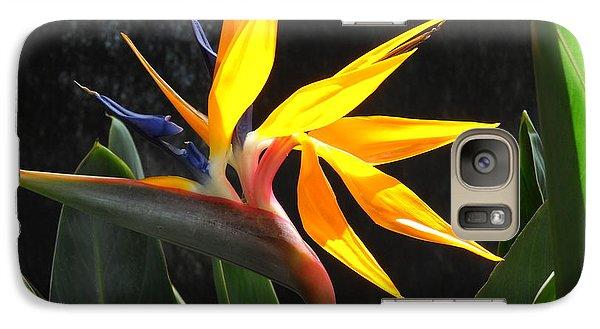 Galaxy Case featuring the photograph Bird Of Paradise by Yolanda Koh