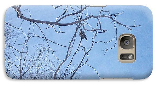 Galaxy Case featuring the photograph Bird On A Limb by Jewel Hengen