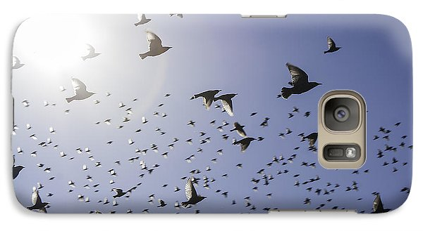 Galaxy Case featuring the photograph Birds by Lynn Geoffroy