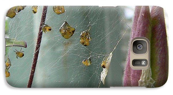 Galaxy Case featuring the photograph Birth Of A Spider by Pamela Patch
