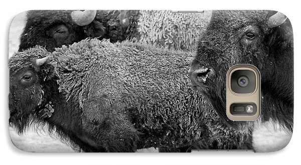 Bison - Way Out West Galaxy S7 Case by Melany Sarafis