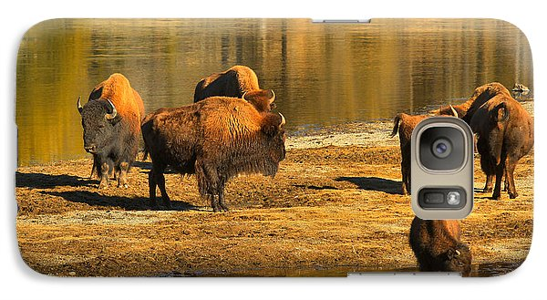 Galaxy Case featuring the photograph Bison Family Crossing by Adam Jewell