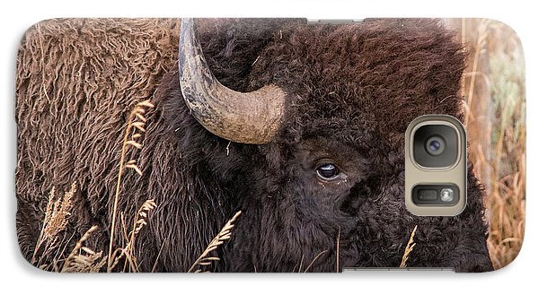 Galaxy Case featuring the photograph Bison In The Grass by Mary Hone