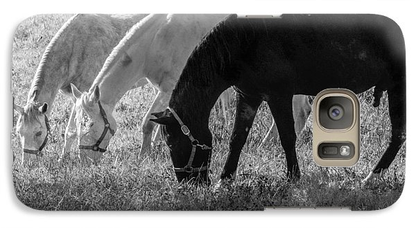 Galaxy Case featuring the photograph Black And White Horse Trio Grazing by Eleanor Abramson