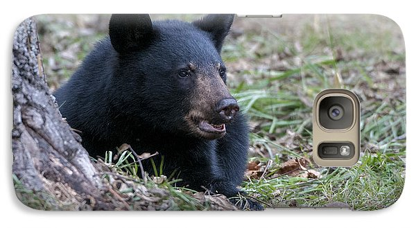 Galaxy Case featuring the photograph Black Bear Resting by Tyson and Kathy Smith