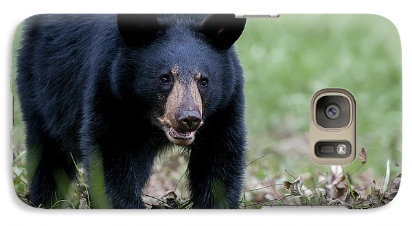 Galaxy Case featuring the photograph Black Bear by Tyson and Kathy Smith