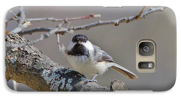 Galaxy Case featuring the photograph Black Capped Chickadee 1109 by Michael Peychich