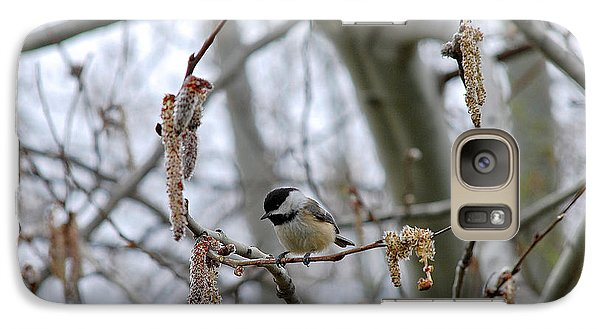 Galaxy Case featuring the photograph Black-capped Chickadee 20120321_38a by Tina Hopkins