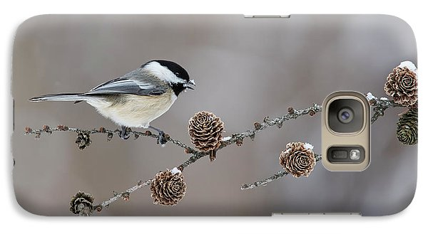 Galaxy Case featuring the photograph Black-capped Chickadee by Mircea Costina Photography