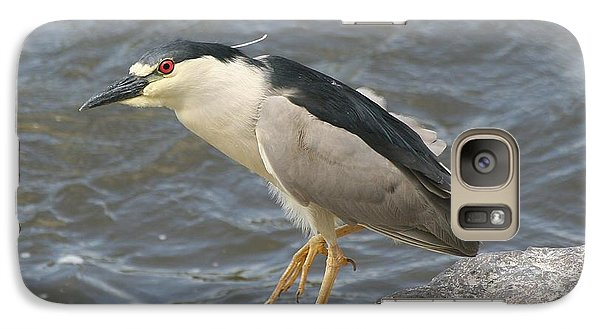 Galaxy Case featuring the photograph Black-crowned Night Heron by Doris Potter