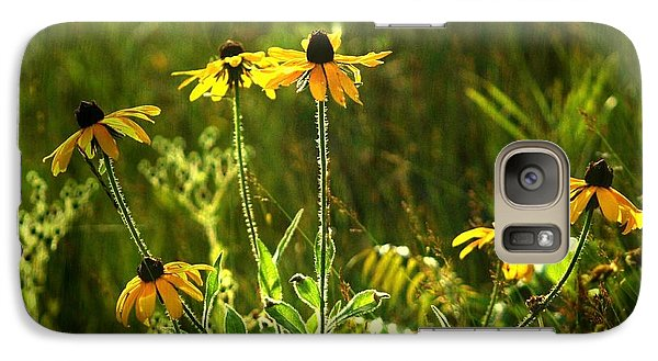 Galaxy Case featuring the photograph Black Eyed Susans In The Wild by Jim Vance