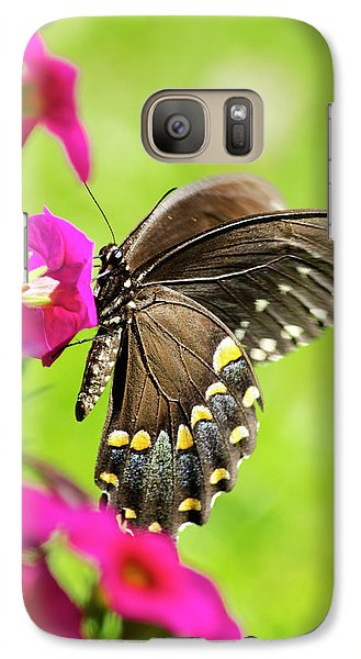 Galaxy S7 Case featuring the photograph Black Swallowtail Butterfly by Christina Rollo
