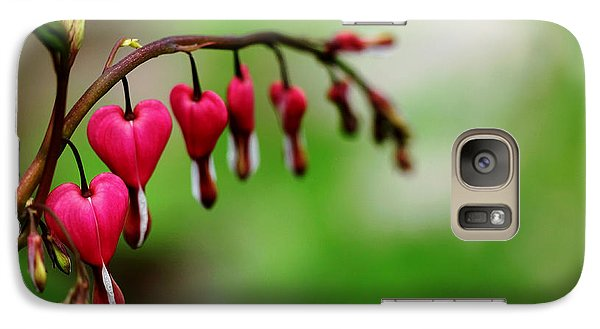 Galaxy Case featuring the photograph Bleeding Hearts Flower Of Romance by Debbie Oppermann