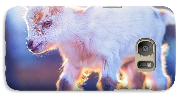 Little Baby Goat Sunset Galaxy Case by TC Morgan