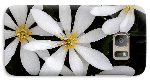 Galaxy Case featuring the photograph Sanguinaria by Skip Tribby