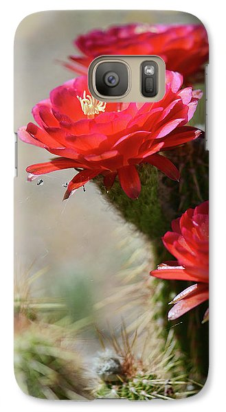 Galaxy Case featuring the photograph Bloomin' Cacti by Barbara Manis