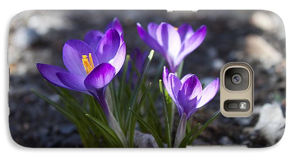 Galaxy Case featuring the photograph Blooming Crocus #3 by Jeff Severson