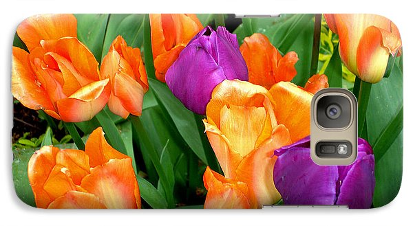 Galaxy Case featuring the photograph Blooming Multitude by Lynda Lehmann