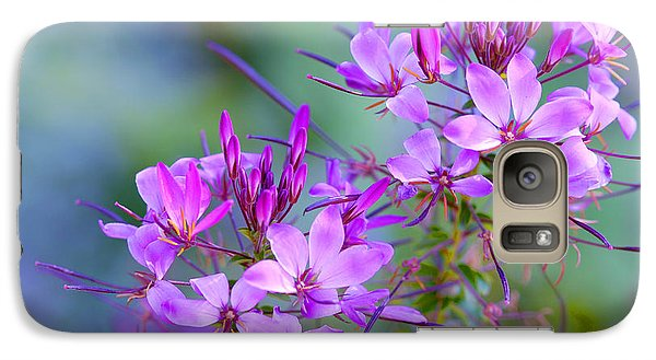 Galaxy Case featuring the photograph Blooming Phlox by Alana Ranney