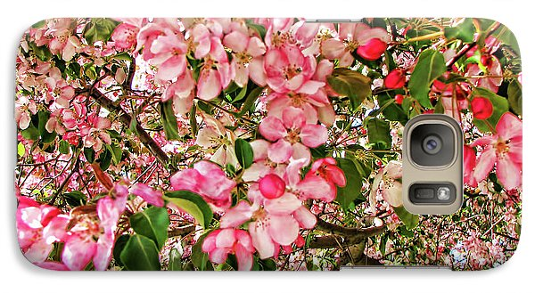 Galaxy Case featuring the photograph Blossoms by Traci Cottingham