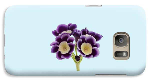 Galaxy Case featuring the photograph Blue Auricula On A Transparent Background by Paul Gulliver