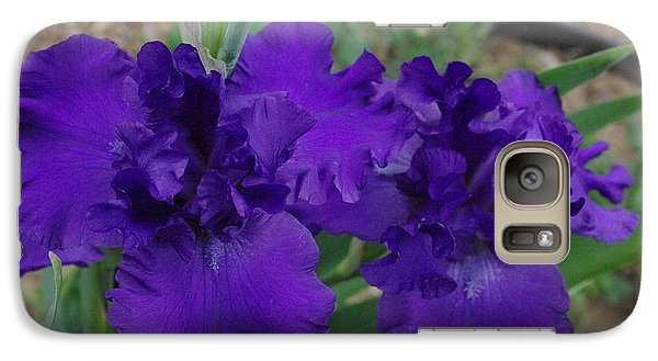Galaxy Case featuring the photograph Blue Bearded Irises by Robyn Stacey