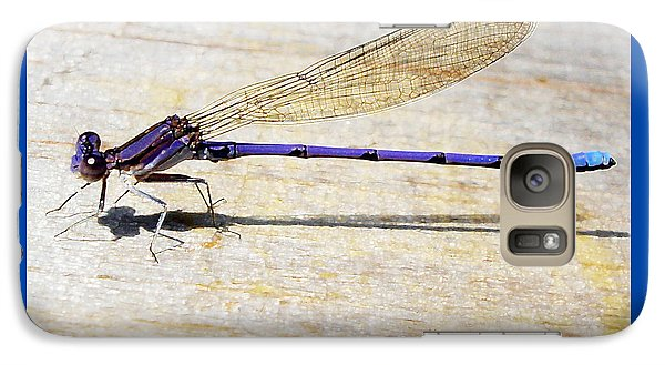 Galaxy Case featuring the photograph Blue Damselfly by Margie Avellino
