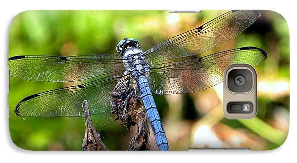 Galaxy Case featuring the photograph Blue Dragonfly by Terri Mills