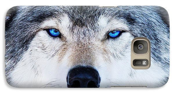 Galaxy Case featuring the photograph Blue Eyed Wolf Portrait by Mircea Costina Photography