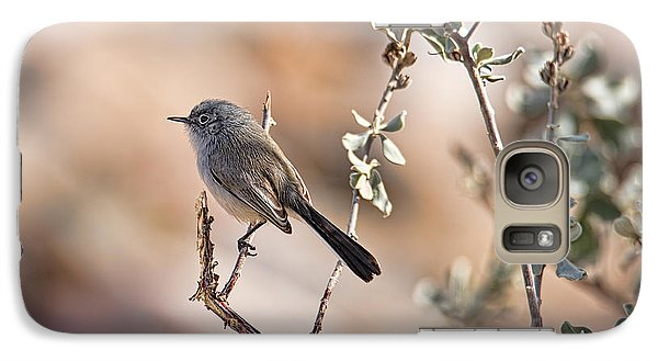 Galaxy Case featuring the photograph Black-tailed Gnatcatcher by Dan McManus