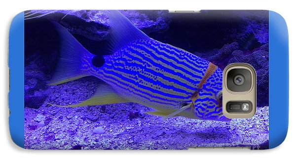Galaxy Case featuring the photograph Blue Fish Groupie by Richard W Linford