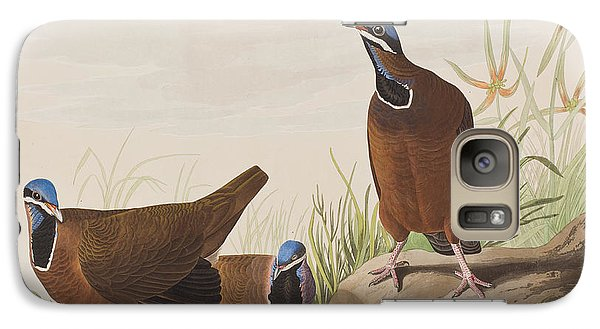 Blue Headed Pigeon Galaxy S7 Case by John James Audubon