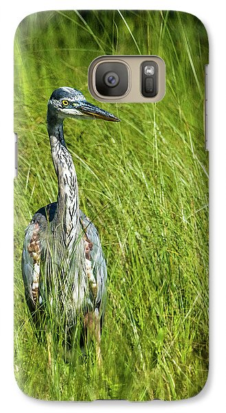 Galaxy Case featuring the photograph Blue Heron In A Marsh by Paul Freidlund