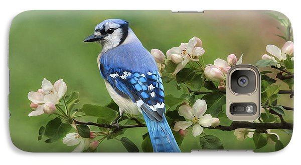 Bluejay Galaxy S7 Case - Blue Jay And Blossoms by Lori Deiter