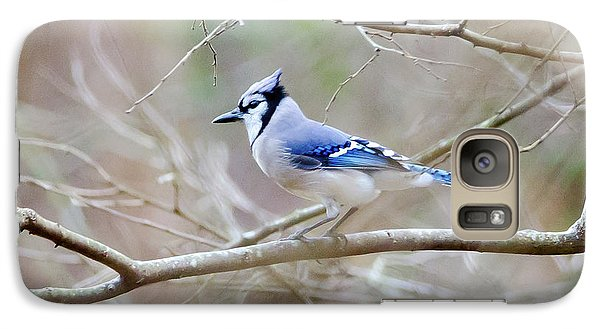 Galaxy Case featuring the photograph Blue Jay by George Randy Bass