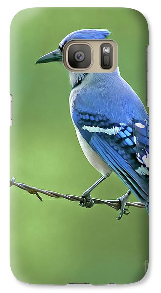 Bluejay Galaxy S7 Case - Blue Jay On The Fence by Robert Frederick